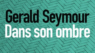 Gerald Seymour - Dans son ombre