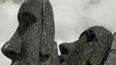 Photo of Jared Diamond – Effondrement