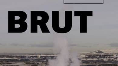 Photo de Naomi Klein, Nancy Huston – Brut (2015)