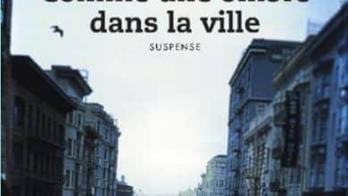Nicolas Zeimet - Comme une ombre dans la ville