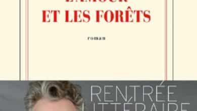 Eric Reinhardt - L'amour et les forets