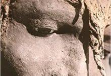 Photo de Marylene Patou-Mathys – Neanderthal une autre humanité
