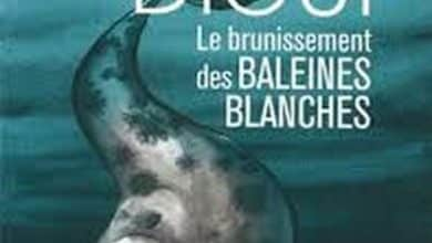 Photo of Boucar Diouf – Le brunissement des baleines blanche