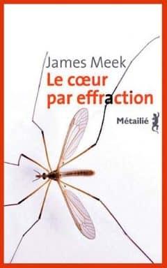 James Meek - Le coeur par effraction