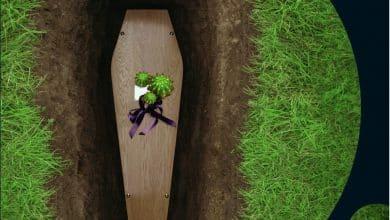 Photo of Catherine Monce – On ne fleurit pas les tombes avec des cactus