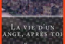 Nadine Blaquière - La vie d'un ange, après toi