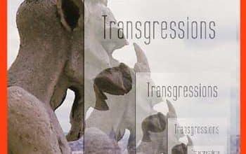 Vaiju Naravane - Transgressions