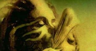 Anne Rice - L'heure des sorcières