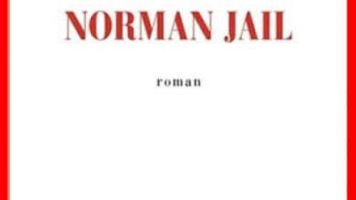 Eric Fottorino - Trois jours avec Norman Jail