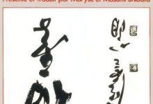 Photo de Maître Takuan – Mystères de la sagesse immobile