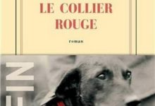 Photo de Jean-Christophe Rufin – Le Collier rouge