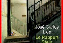 José Carlos Llop - Le rapport Stein