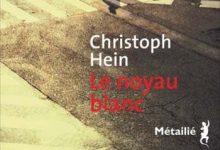 Christoph Hein - Le noyau blanc