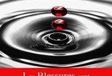 Yann Chambers - Les Blessures sont parfois Éternelles