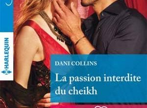 Dani Collins - La passion interdite du cheikh