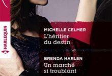 Photo de Michelle Celmer & Brenda Harlen – L'héritier du destin – Un marché si troublant