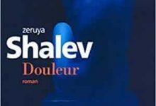 Zeruya Shalev - Douleur