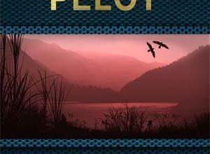 Pierre Pelot - Le Jour de l'enfant tueur: Le Livre de Ahorn, Tome 1