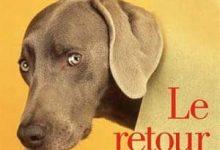 Didier Van Cauwelaert - Le retour de Jules