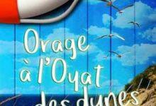 Isabelle Bergi - Orage à l'Oyat des dunes
