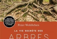 Photo de Peter Wohlleben – La Vie secrète des arbres (2017)