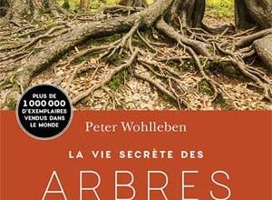Photo of Peter Wohlleben – La Vie secrète des arbres (2017)