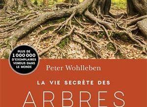 Photo of Peter Wohlleben – La Vie secrète des arbres (2017)