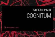 Photo de Stephan Palk – Cognitum