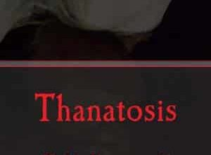 Lénaïc Noirot - Thanatosis