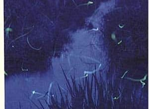 Aki Shimazaki - Le poids des secrets, Tome 5