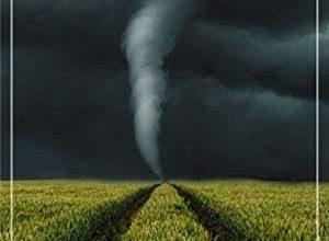 Meg Little Reilly - Les tempêtes