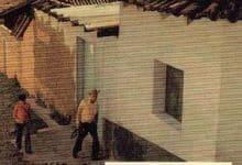 Paco Ignacio Taibo II - La vie même