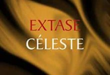 Callixte MacMahon - Extase Céleste