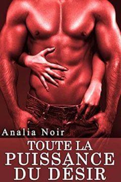 Analia Noir - Toute La Puissance du Désir