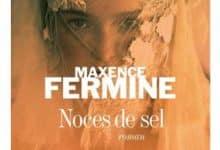Maxence Fermine - Noces de sel