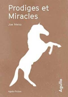 Joe Meno - Prodiges et Miracles