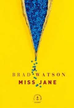 Brad Watson - Miss Jane