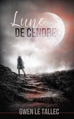 Gwen Le Tallec - Lune de cendre