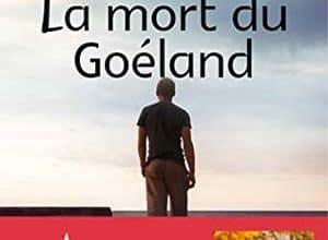 Jean-Frédéric Jung - La mort du goéland