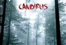 Photo de Candirus (2017)