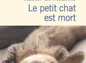 Photo of Le petit chat est mort (2020)