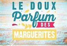 Photo de Le doux parfum des marguerites